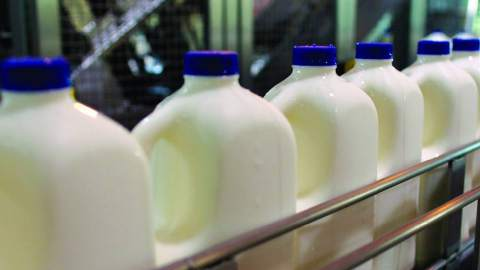 Delivering an Automation Network for a Fully Automated Milk Plant
